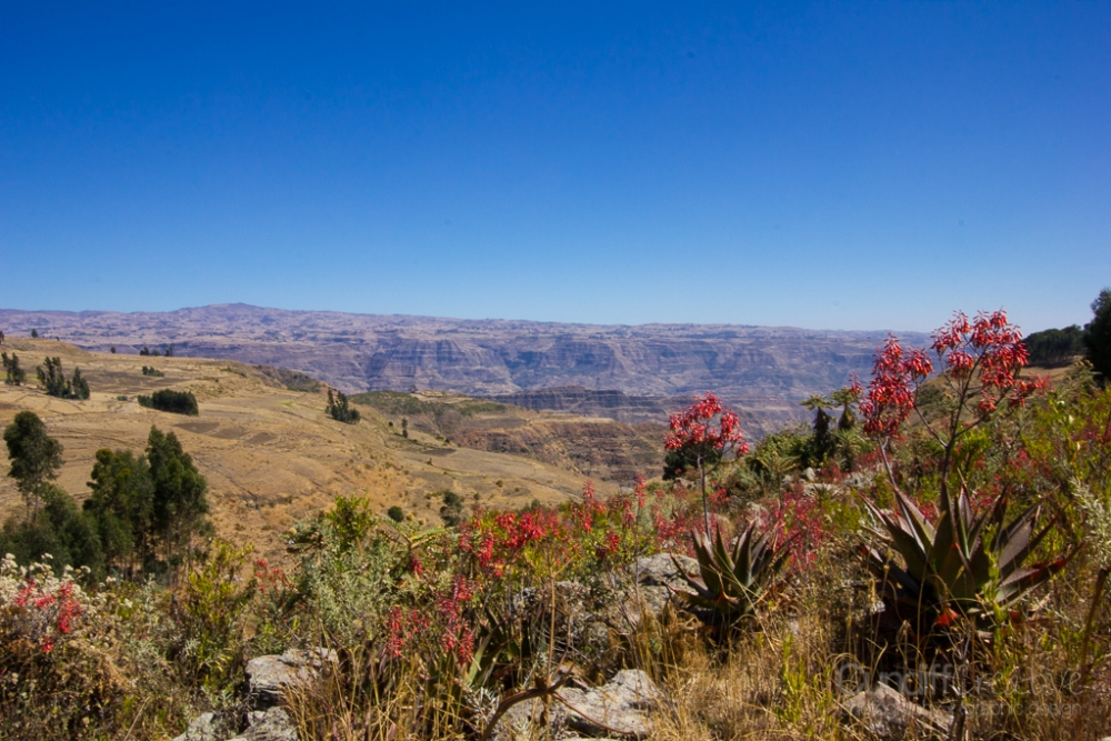 The Great Rift Valley (1/6)