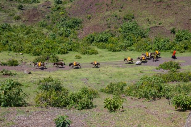 Gondar-Bahirdar-Butajira-137