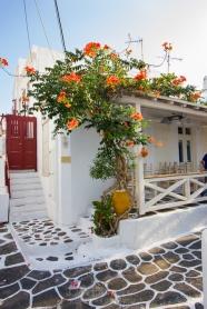 Greece-Mykonos-48
