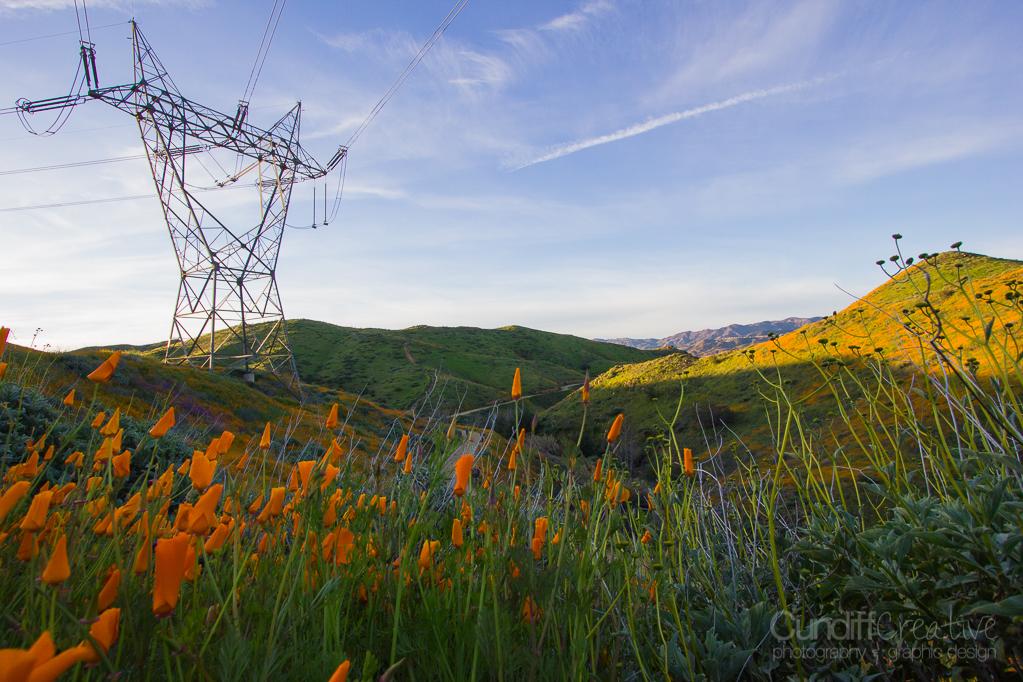 Walker Canyon, Heather Cundiff, Cundiff Creative